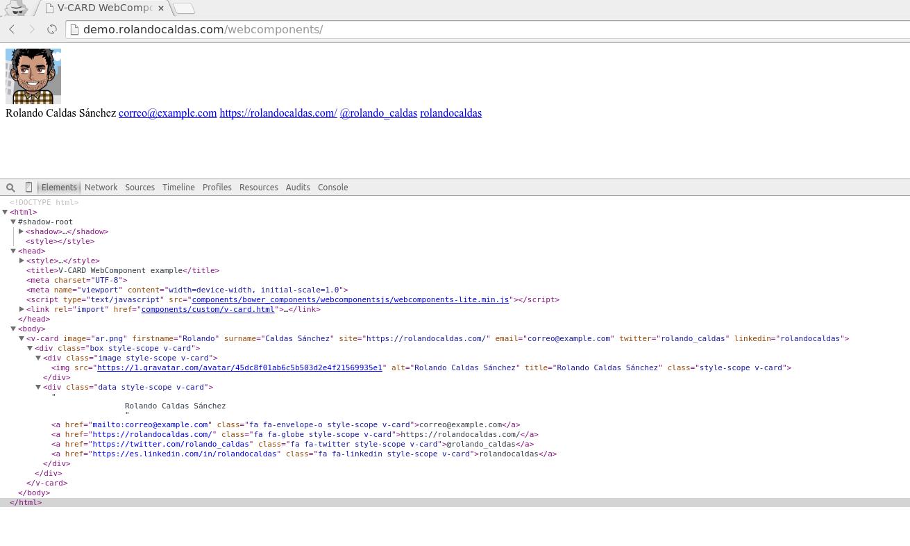 Así se ve nuestro webcomponent